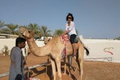 Sitting on a Camel