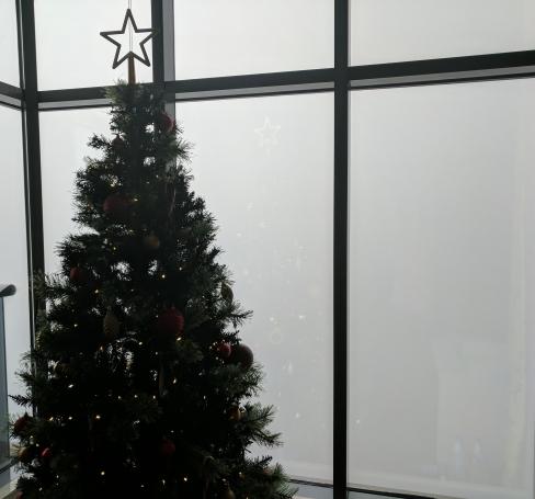 White Christmas!